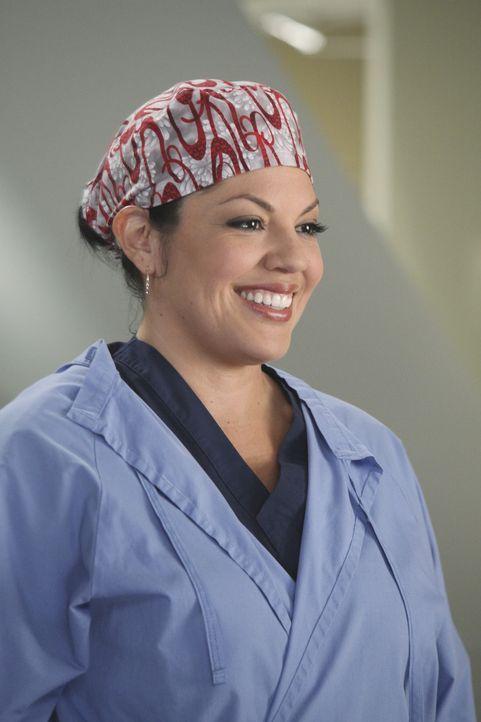 Während Arizona alles tut, um Callie (Sara Ramirez) zurück zu bekommen, bekommen die Assistenzärzte neue Medizinstudenten zugeteilt, die ihnen ü... - Bildquelle: ABC Studios