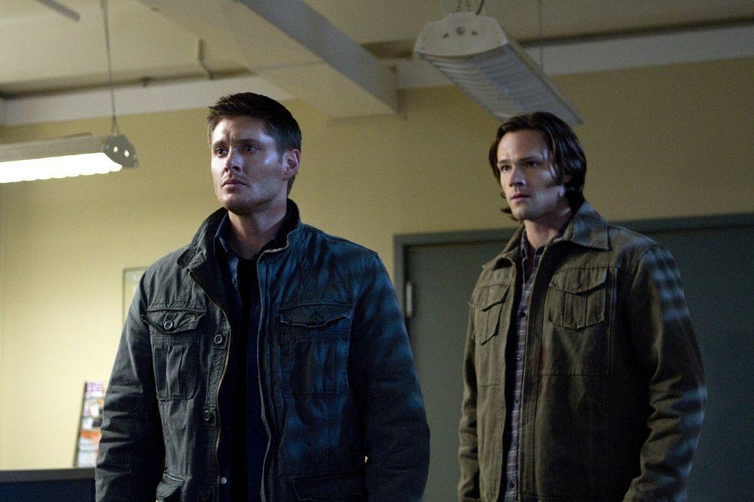 Riskieren im Kampf gegen das Böse ihr Leben aufs Neue: Sam (Jared Padalecki, r.) und Dean (Jensen Ackles, l.) ... - Bildquelle: Warner Bros. Television