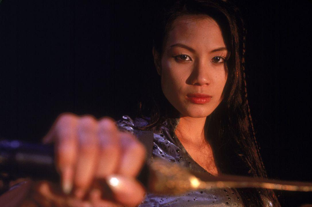 Vor vielen Jahren tötete der brutale Vampirboss Niran Sangs (Stephanie Chao) Ehemann und Sohn. Seitdem verfolgt die junge Vampirin nur noch ein Ged... - Bildquelle: 2002 Global Entertainment Productions GmbH & Co. Movie KG. All Rights Reserved.
