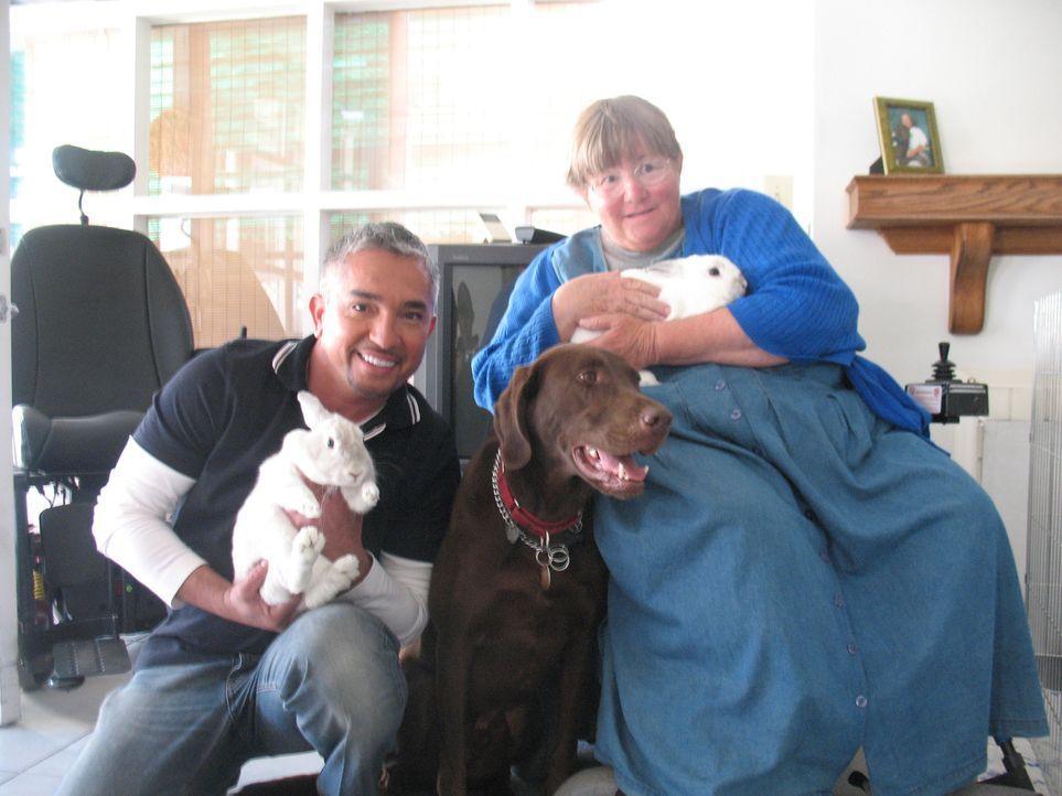 Labrador Beau ist eine große Stütze für sein Frauchen Anita Brandenburg, die durch eine Nerven- und Muskelerkrankung an den Rollstuhl gefesselt ist.... - Bildquelle: Rive Gauche Intern. Television