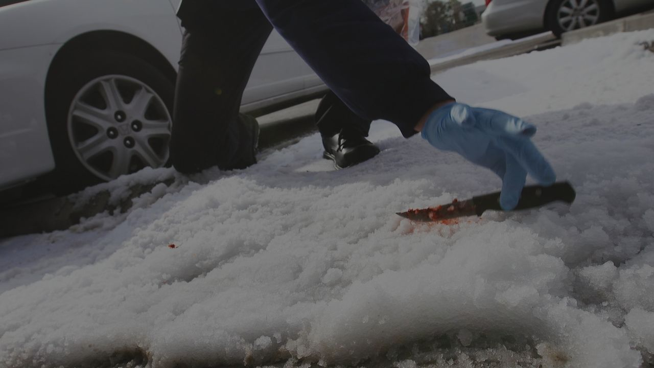 Als die Sonne im Jahr 1992 den Schnee zum Schmelzen bringt, findet die Polizei ein blutiges Messer auf dem Gehweg in Nova Scotia, Kanada. Die Ermitt... - Bildquelle: LMNO Cable Group