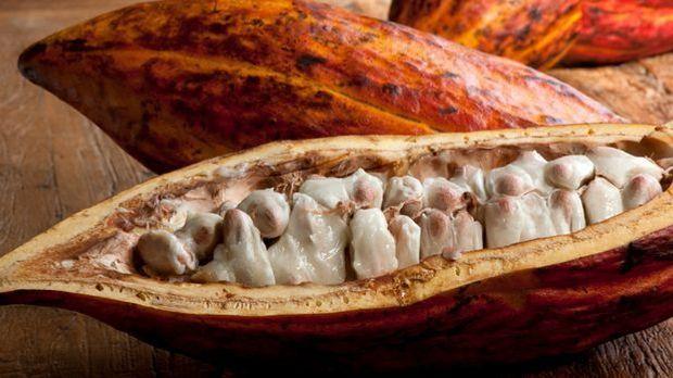 Kakaobutter, natürlich schön gepflegt