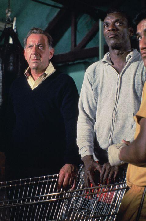 Ausgerechnet Ben Naday (Moses Gunn, r.), ein langjähriger Freund von Quincy (Jack Klugman, l.), wird verdächtigt, den Profiboxer Luke Stokes ermorde... - Bildquelle: Universal Pictures