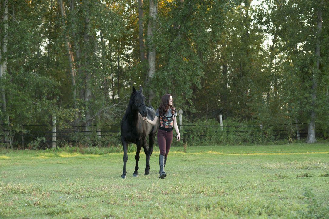 Um die Cherry Creek Farm zu retten, muss Kelly (Kacey Rohl) das bevorstehende Reitturnier gewinnen ... - Bildquelle: 2012 Twentieth Century Fox Film Corporation. All rights reserved.