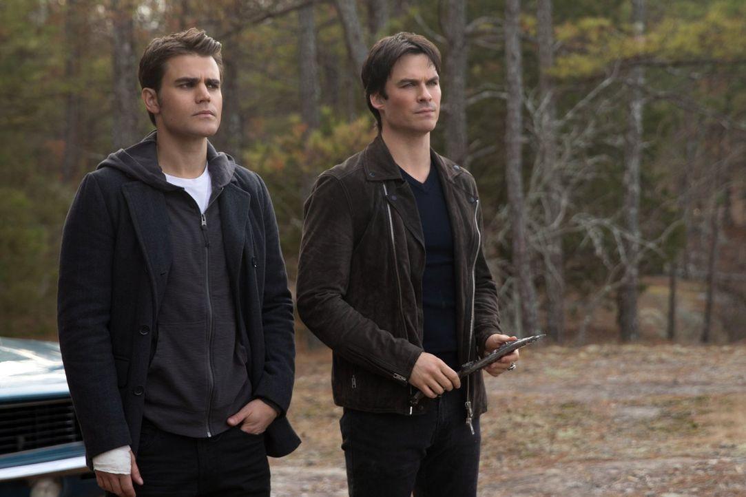 Während sich Stefan (Paul Wesley, l.) und Damon (Ian Somerhalder, r.) gegen Cade zusammenschließen, um Elena zu retten, müssen sich Caroline und Ala... - Bildquelle: Warner Bros. Entertainment, Inc.