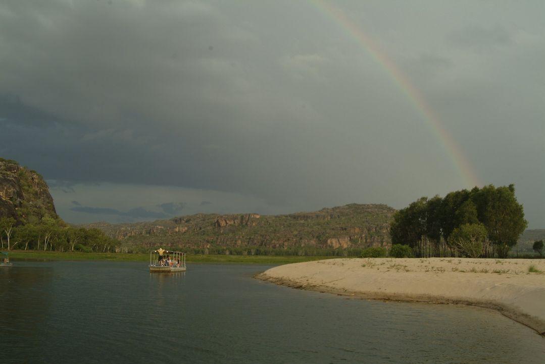 Die Idylle währt nur kurz: Kates Wassersafari ins nordaustralische Revier zu den Salzwasserkrokodilen endet ganz anders als geplant ...
