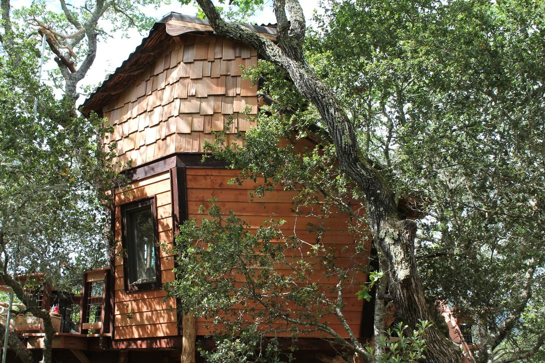 Wer träumt nicht von einem eigenen Baumhaus? Für Peter und Amy Harding wird dieser Traum jetzt dank der Treehouse Guys Realität ... - Bildquelle: 2015, DIY Network/Scripps Networks, LLC. All Rights Reserved.