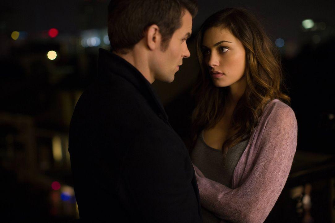 Als die Werwölfe in Gefahr geraten, sucht Hayley (Phoebe Tonkin, r.) Hilfe bei Elijah (Daniel Gillies, l.) ... - Bildquelle: Warner Bros. Television