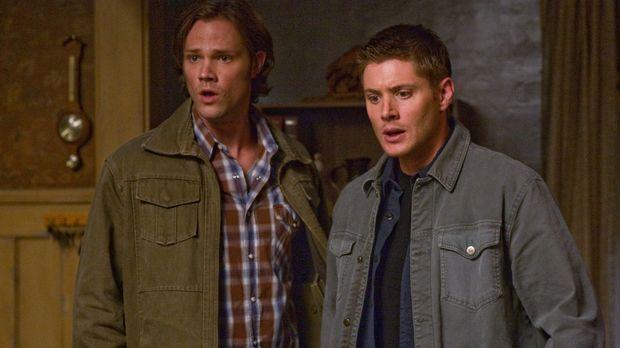 Untersuchen Berichte von Märchengestalten, die plötzlich real werden: Sam (Ja...