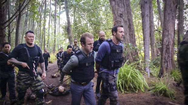 Hawaii Five-0 - Hawaii Five-0 - Staffel 7 Episode 21: Chicago