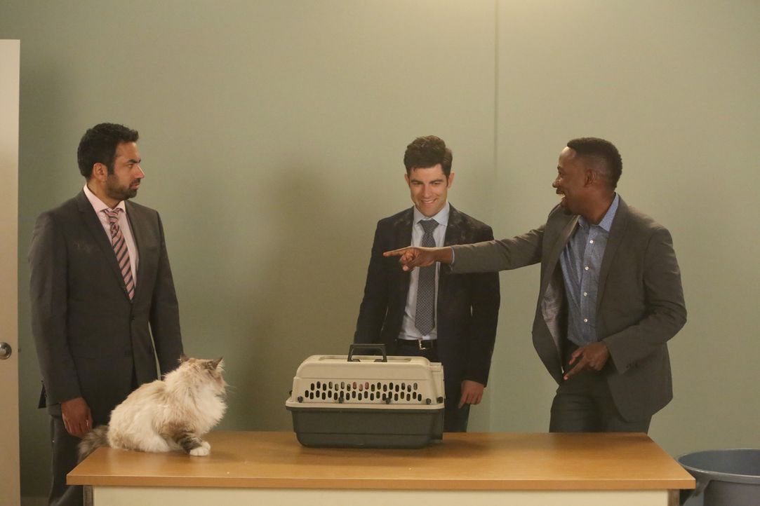 Schmidt (Max Greenfield, M.) will Winston (Lamorne Morris, r.) helfen, für seine Katze ein Vorsprechen zu ergattern, doch dann erkennen die beiden,... - Bildquelle: Patrick McElhenney 2016 Fox and its related entities.  All rights reserved.