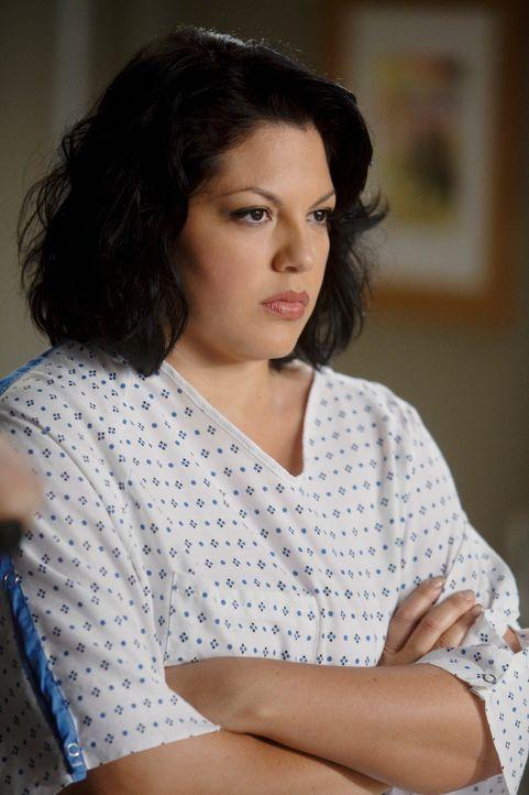 Callie (Sara Ramirez) ist von Mark schwanger. Da Mark unbedingt Kinder haben will und Callie seine beste Freundin ist, steht für ihn außer Frage, si... - Bildquelle: ABC Studios