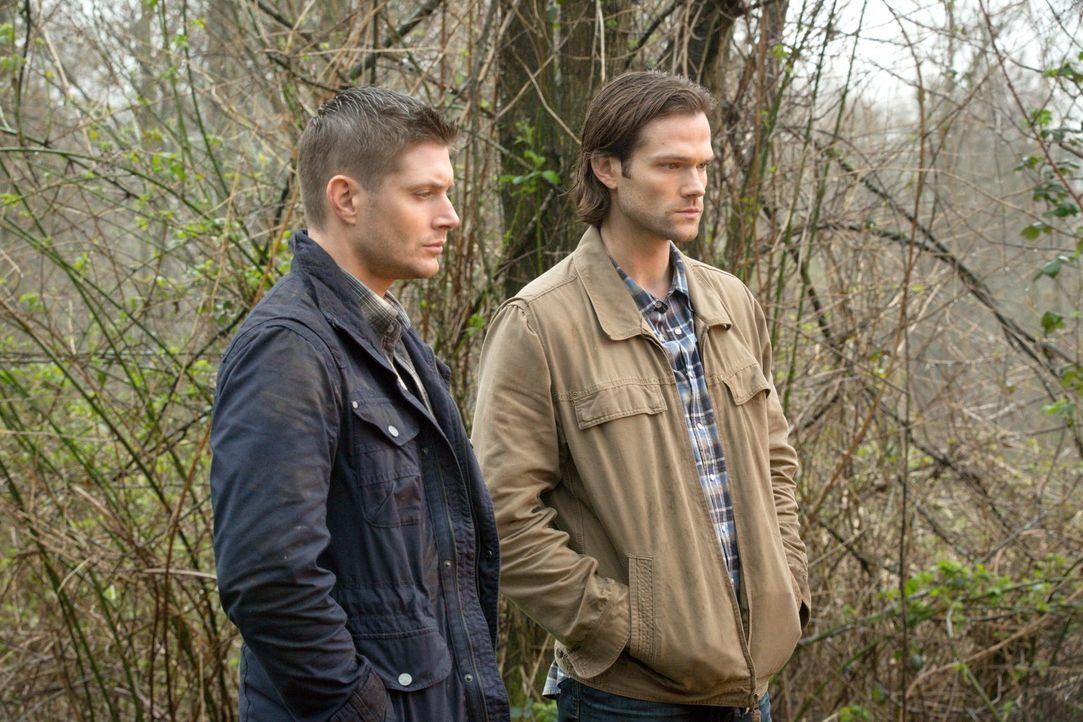 Sam (Jared Padalecki, r.) muss mit den Folgen seiner Entscheidung leben, während Dean (Jensen Ackles, l.) sich auf die Bekämpfung der Stynes stürzt... - Bildquelle: 2016 Warner Brothers