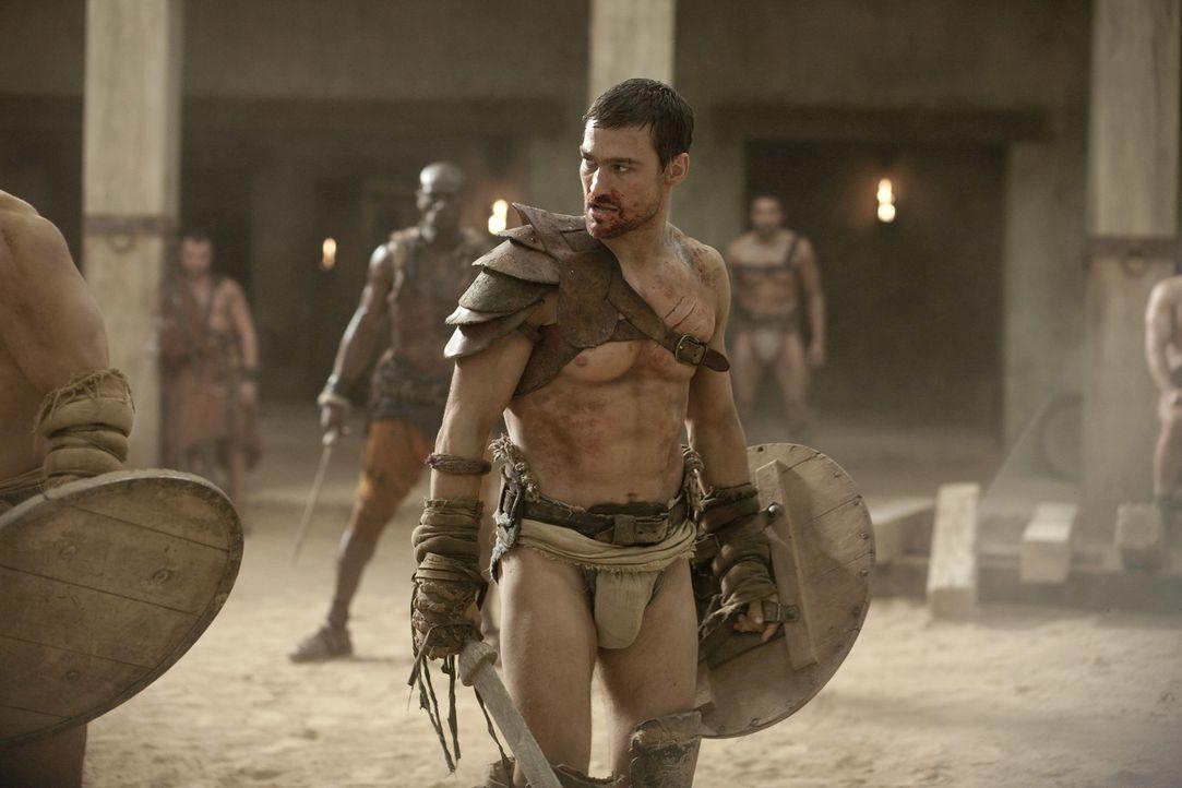 Um seine Frau aus der Sklaverei freikaufen zu können, tritt Spartacus (Andy Whitfield) gegen den stärksten Kämpfer, den die Arena je gesehen hat,... - Bildquelle: 2010 Starz Entertainment, LLC