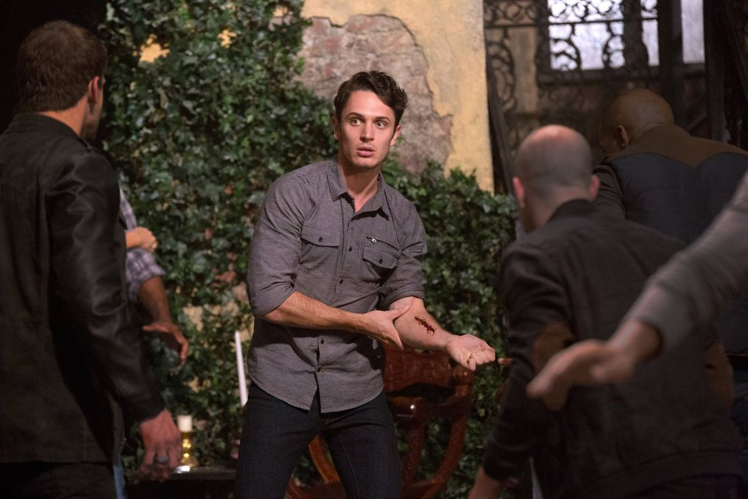 Als Finn die Vampire und die Werwölfe zusammen auf dem Mikaelson-Anwesen einsperrt, wird Aiden (Colin Woodell) mit ganz privaten Fragen konfrontiert... - Bildquelle: Warner Bros. Television