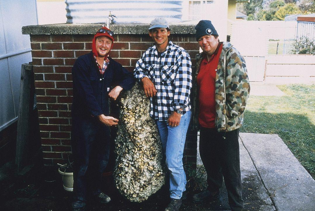 Die drei Loser Wookie (Stephen Curry, l.), Lotto (Eric Bana, M.) und Sue (Dave O'Neil, r.) haben einen überdimensionalen Goldklumpen gefunden ... - Bildquelle: Overseas FilmGroup
