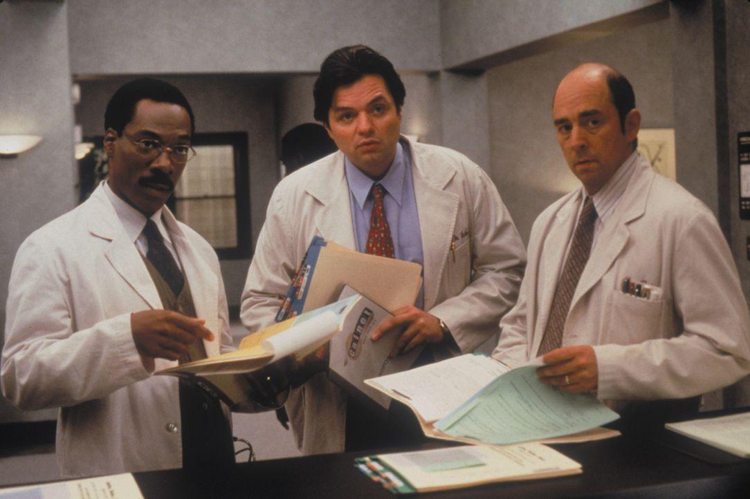 Tierarzt Dr. Dolittle (Eddie Murphy, l.) kümmert sich gemeinsam mit seinen Kollegen Dr. Weller (Oliver Platt, M.) und Dr. Reiss (Richard Schiff, r.)... - Bildquelle: 1998 Twentieth Century Fox Film Corporation. All rights reserved.