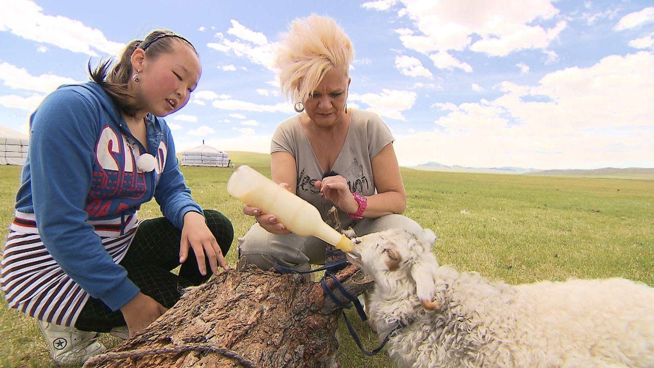 """""""Mama International"""": Ramona (r.) reist in die Mongolei, um dort eine einheimische Familie zu managen. Eine fremde Kultur, eine unverständliche Spr... - Bildquelle: SAT.1"""