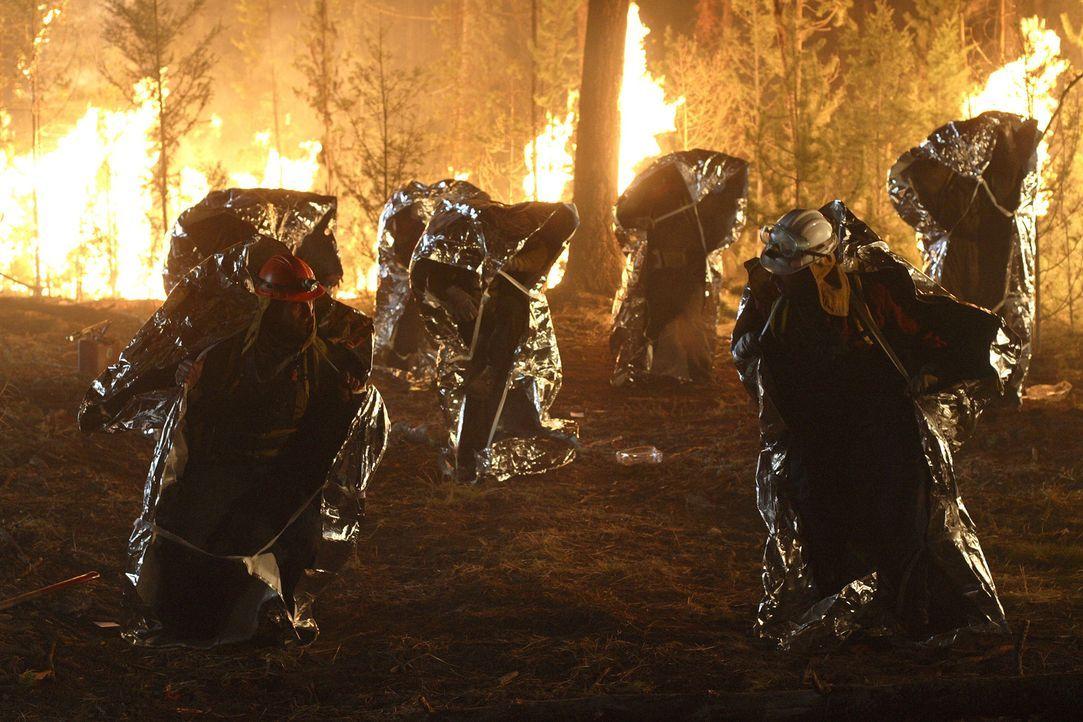 Ein riesiger Waldbrand im Yellowstone National Park gefährdet das Leben vieler Touristen Können die unerschrockenen Feuerwehrmänner die Eingeschloss...