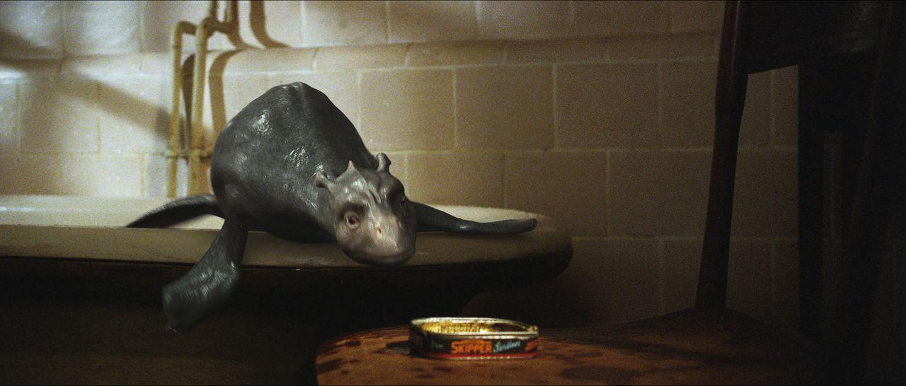 Schon bald entschlüpft dem Ei ein sehr lebhaftes dinosaurierartiges Tier, dem Angus den Namen Crusoe gibt. Das Wesen wächst allerdings mit atember... - Bildquelle: CPT Holdings, Inc. All Rights Reserved. (Sony Pictures Television International)