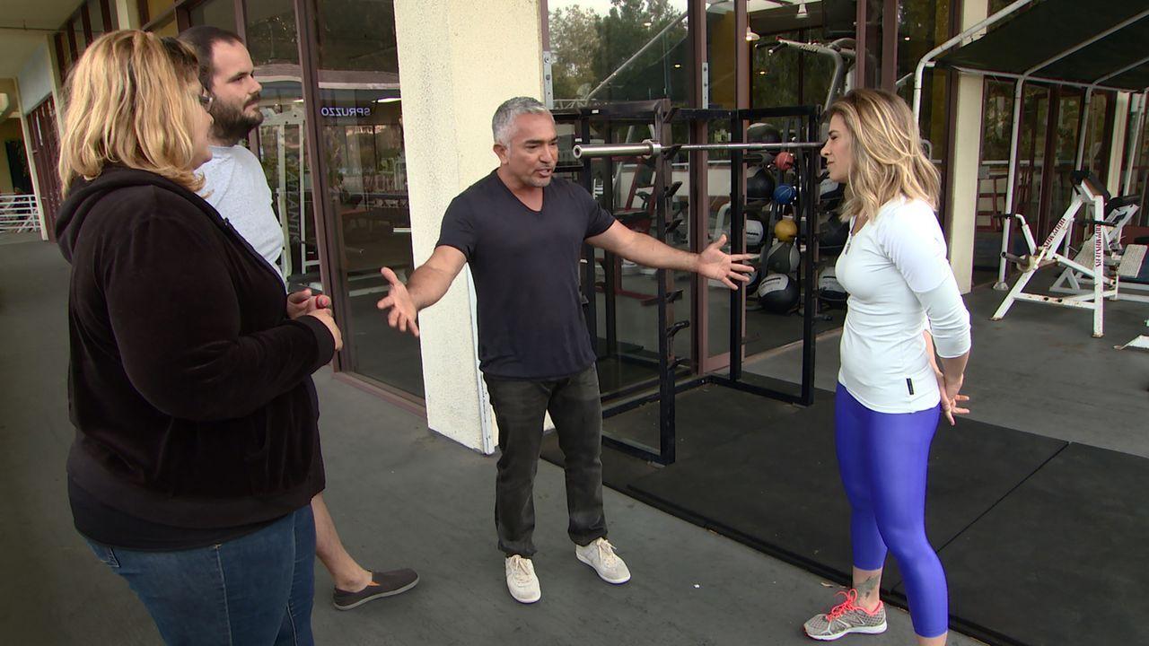 Cesar (2.v.r.) versucht, Krystal (l.) und Anthony (2.v.l.) zu zeigen, wie sie ihren energiegeladenen Hund Tic Tac richtig auspowern können ... - Bildquelle: NGC/ ITV Studios Ltd