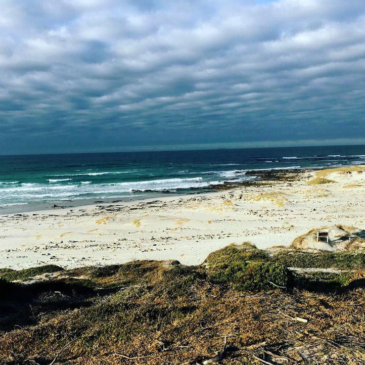 Der Platboom Beach am Kap der guten Hoffnung in Südafrika ist noch weitgehend unentdeckt ... - Bildquelle: 2017,The Travel Channel, L.L.C. All Rights Reserved