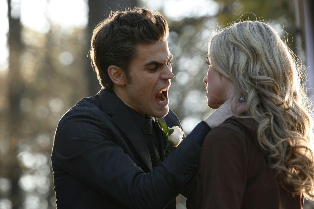 Amber (Spencer Locke, r.) ist zur falschen Zeit am falschen Ort und wird jetzt Opfer von Stefans (Paul Wesley, l.) labilem Zustand ... - Bildquelle: Warner Bros. Television