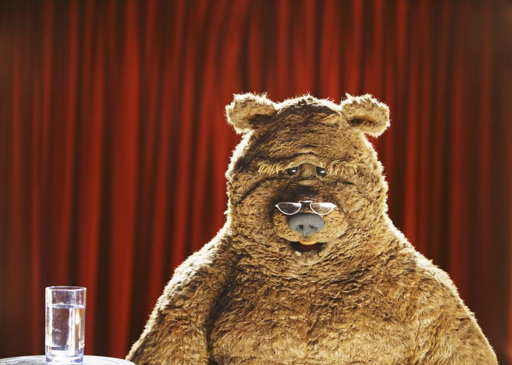 Nicht nur Bobo der Bär, sondern auch andere Crewmitglieder, stehen vor der Kamera ... - Bildquelle: Andrea McCallin ABC Studios