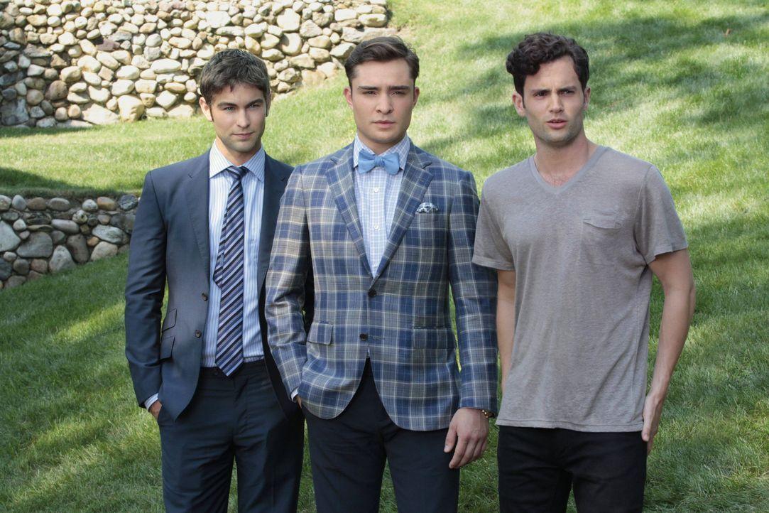Nate, Chuck und Dan in Staffel 6 Gossip Girl - Bildquelle: Warner Bros. Television