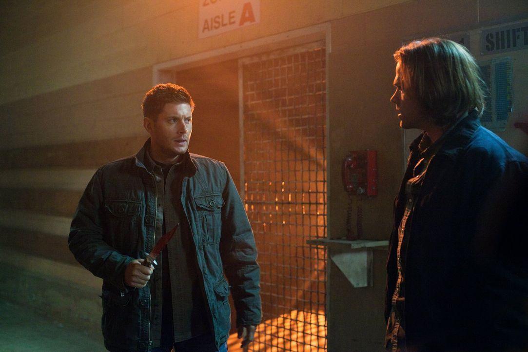Können Sam (Jared Padalecki, r.) und Dean (Jensen Ackles, l.) ihre Unstimmigkeiten wenigstens dann vergessen, wenn sie gegen Crowley in den Kampf zi... - Bildquelle: Warner Bros. Television