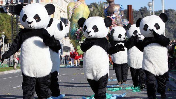 Pandakostüme