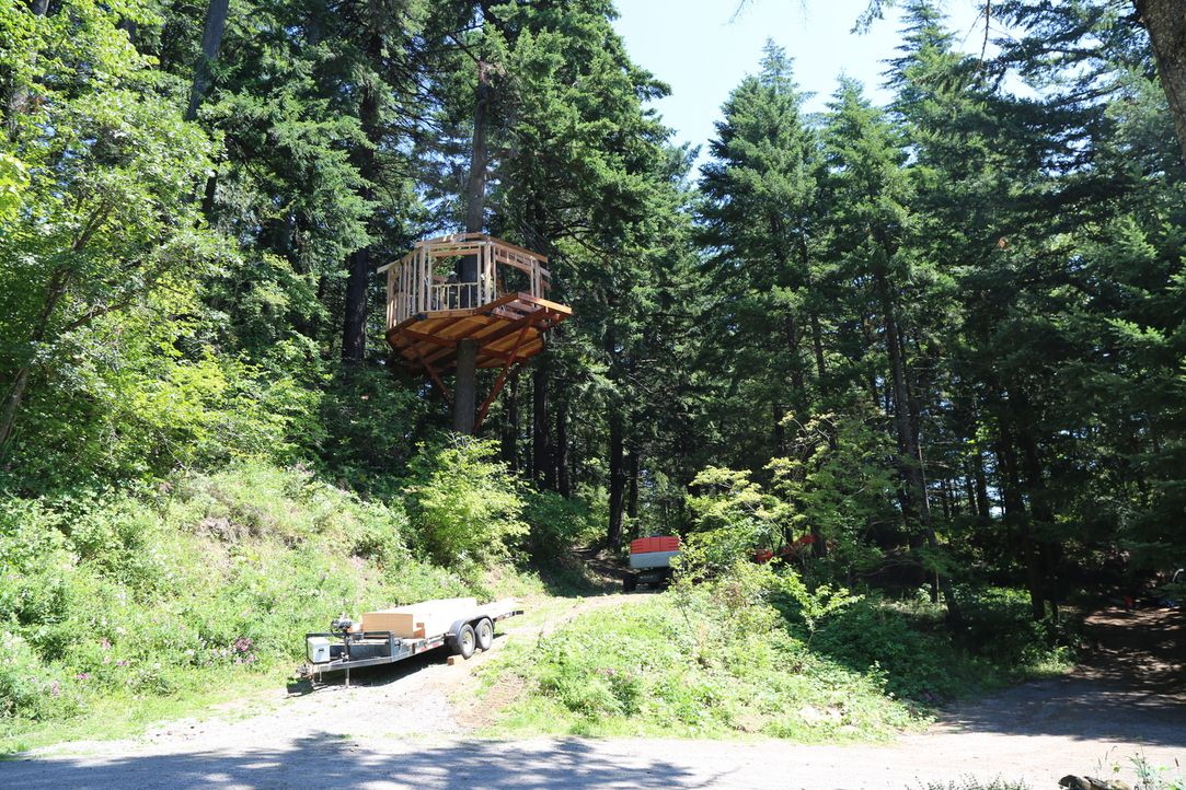 Der jüngere Bruder von Treehouse Guy Michael Garnier lässt sich davon überzeugen, auf seinem Grundstück in Washington ein Baumhaus zu bauen. Für die... - Bildquelle: 2016,DIY Network/Scripps Networks, LLC. All Rights Reserved