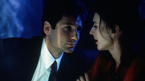 Die schöne Kristen (Justina Vail, r.) hat Verbindung zu den vampirähnlichen M...