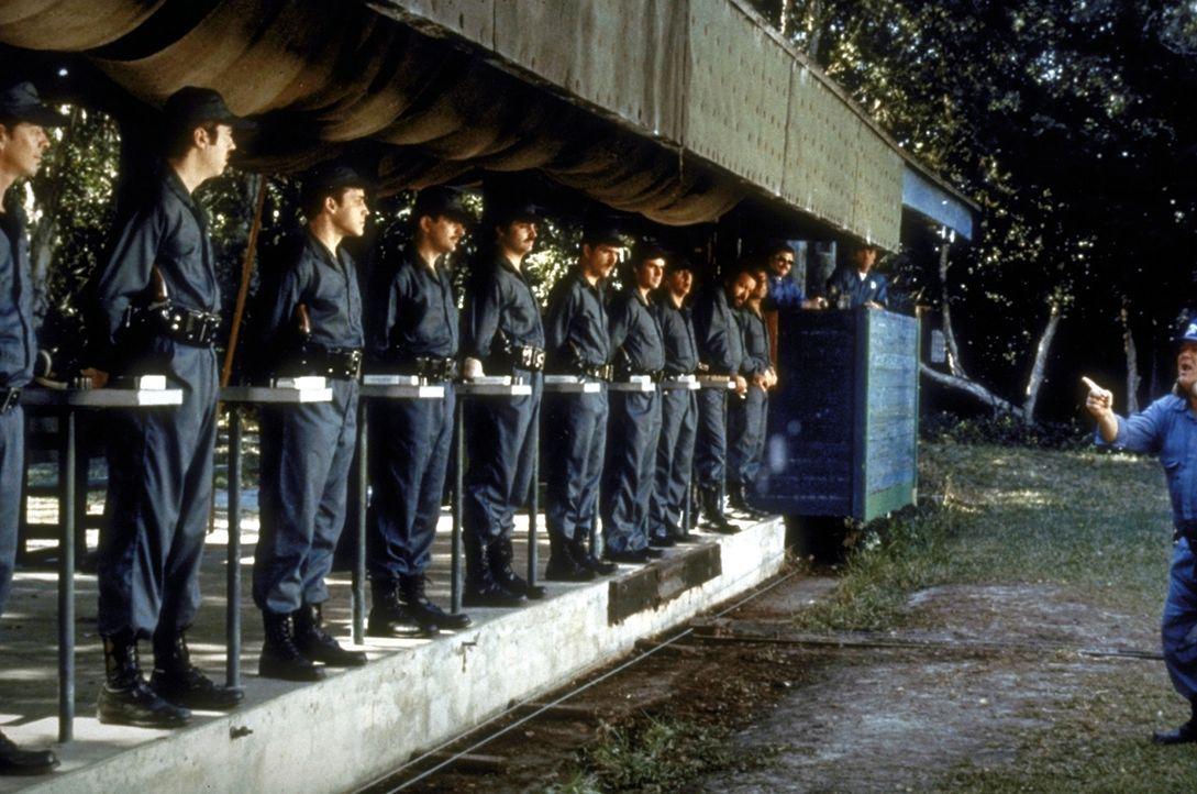 Erfolgreich absolvieren die beiden Kleinganoven Matt und Willbur die Polizeischule und bekommen sogar ihr eigenes Revier zugeteilt ... - Bildquelle: Warner Bros. GmbH