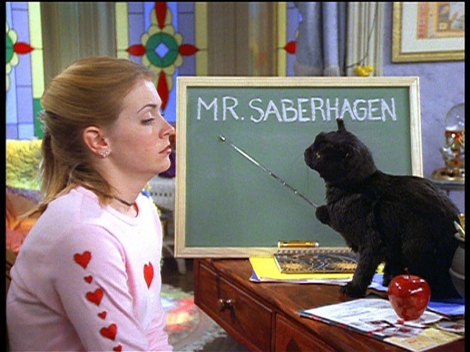 Sabrina (Melissa Joan Hart) bekommt Salem zur Seite gestellt, um die Hinweise zum Familiengeheimnis zu deuten. - Bildquelle: Paramount Pictures
