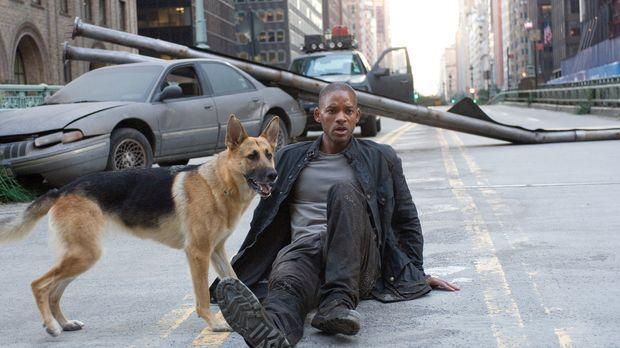 Als einziger Mensch in Manhattan versucht Robert Neville (Will Smith) mit Hil...