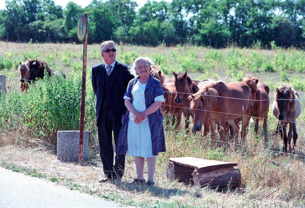 Da Hermann nicht mit sich reden läßt, kommt Johannes (Christoph M. Ohrt, l.) auf die Idee dessen Tochter Mathilde zu kontaktieren. Gemeinsam mit Oma... - Bildquelle: Hardy Spitz Sat.1
