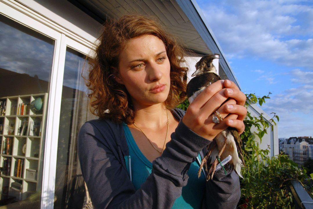 Sara (Marie Rönnebeck) kümmert sich um den kleinen Vogel und ist neugierig, was in dem Brief steht. - Bildquelle: Hardy Spitz Sat.1