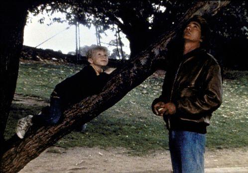 Ein Engel auf Erden - Stevie (Garette Patrick Ratliff, l.) erzählt Jonathan (...