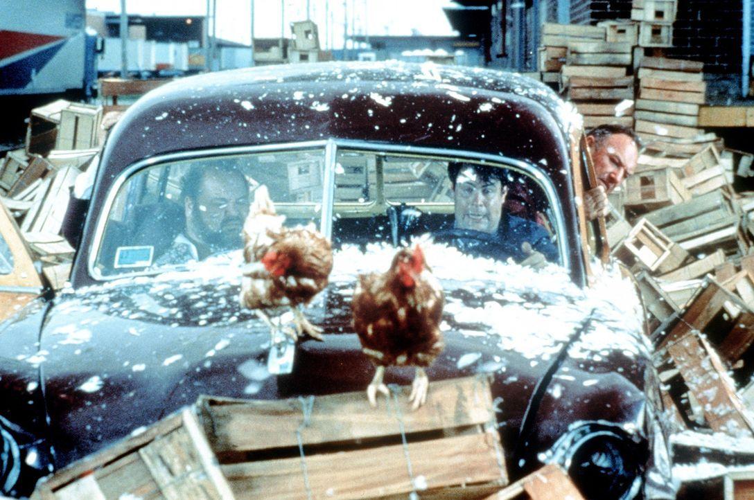 Gutterman (Dom De Luise, l.) gerät zusammen mit den beiden Polizisten Mac (Gene Hackman, r.) und Ellis (Dan Aykroyd, M.) in die seltsamsten Situati... - Bildquelle: TriStar Pictures