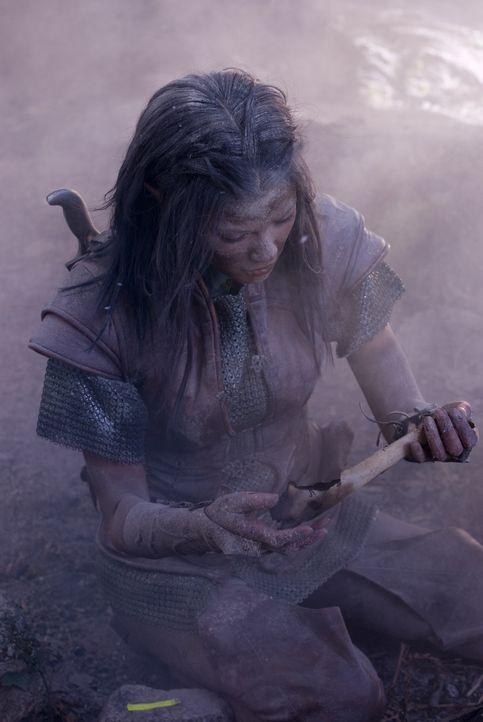 Der Kampf gegen den tyrannischen Dragon Eye fordert viele Opfer, doch die Kriegerin Perfidia (Natassia Malthe) will keinesfalls aufgeben ... - Bildquelle: 2008 Dragonsteel Films Inc.