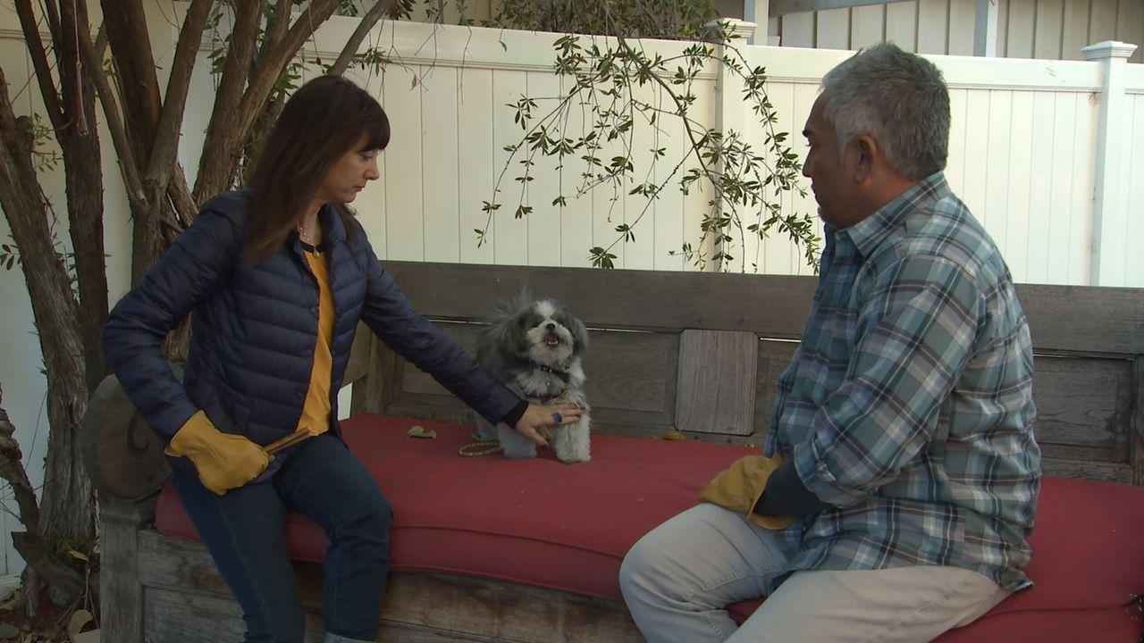 Alyssas (l.) Hund Truffle sorgt mit seltsamen Verhalten immer wieder für Verwunderung. Kann Cesar (r.) den Grund für das Verhalten aufdecken und som... - Bildquelle: NGC/ ITV Studios Ltd