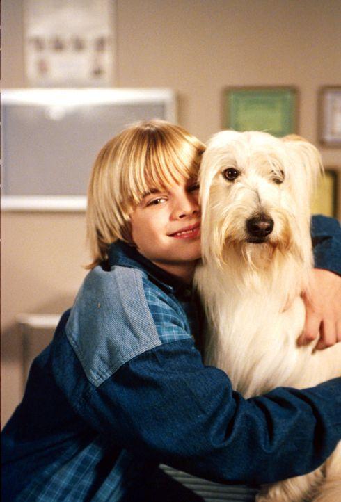 Familienhund Happy bereitet Simon (David Gallagher) große Sorgen! Sie ist entwischt, um ihre Welpen zu suchen und wird dann von einem Auto angefahre... - Bildquelle: The WB Television Network