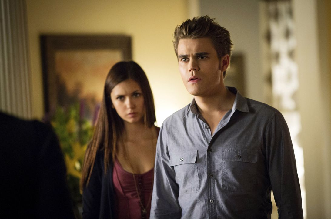 "Stefan Salvatore in Folge 5 ""The Killer"" - Bildquelle: © Warner Bros. Entertainment Inc."
