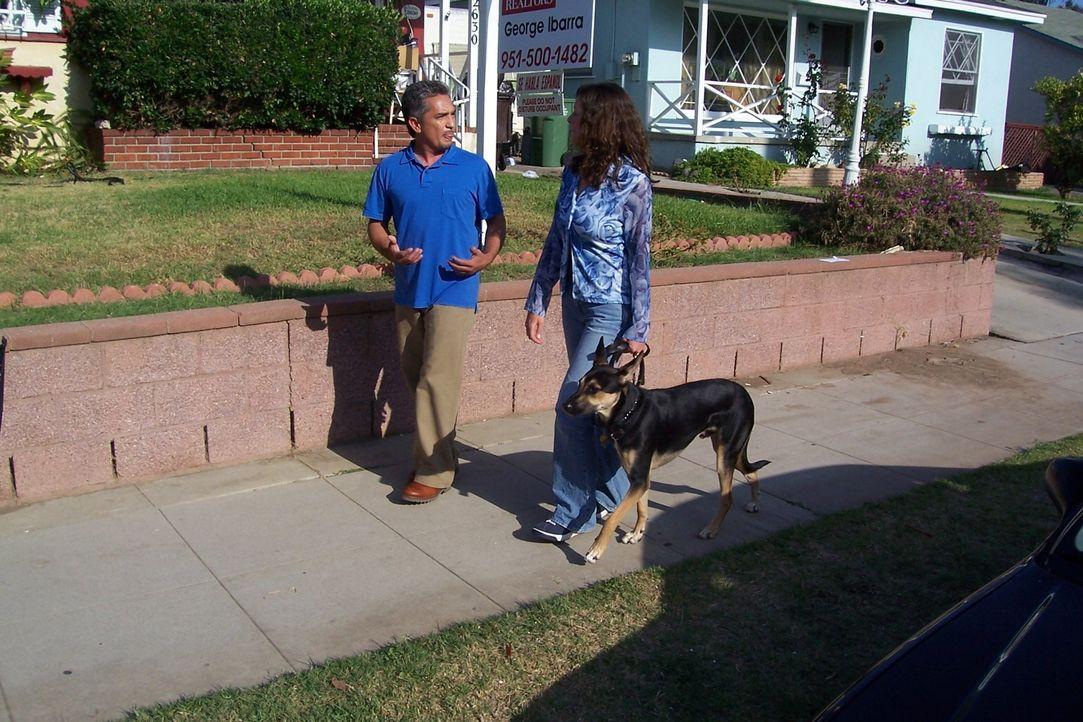 Sonny der Schäferhundmischling verhält sich Fremden gegenüber äußerst aggressiv. Ein Fall für den Hundeflüsterer Cesar Millan (l.) ... - Bildquelle: Rive Gauche Intern. Television