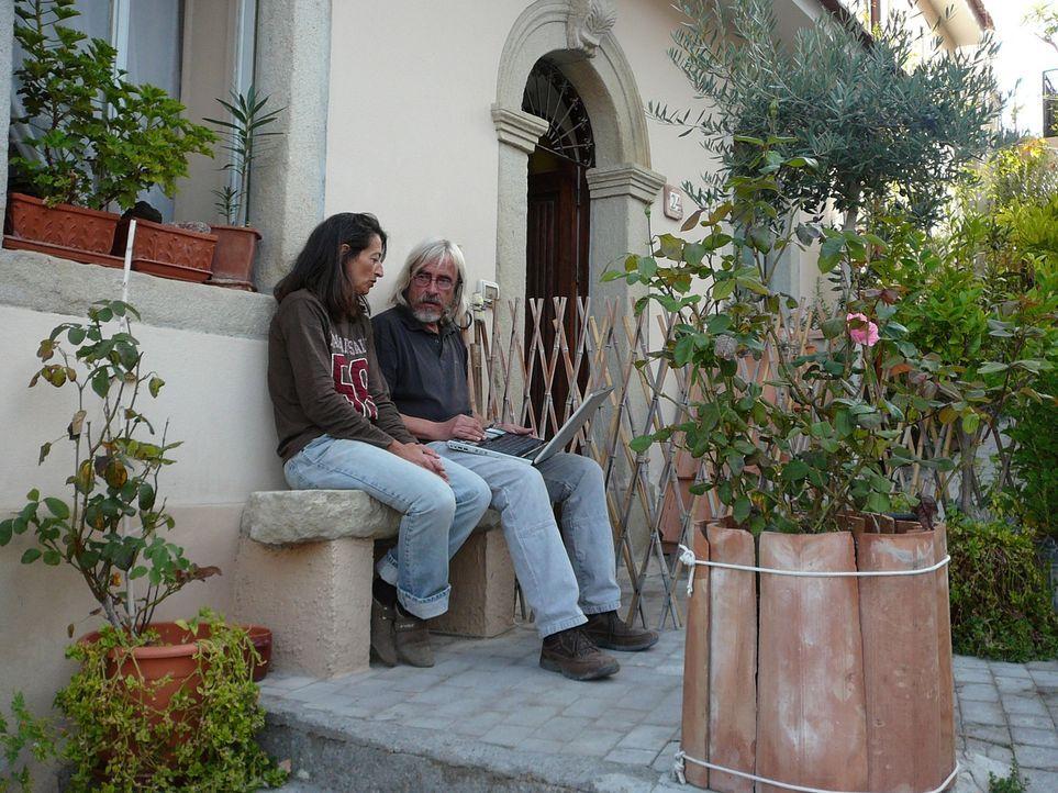 Herbert und Beate Hornek leben seit mittlerweile sechs Jahren auf Sizilien. Die Auswanderer vermieten dort Ferienhäuser und betreiben eine Olivenplantage auf ihrem 11.000 Quadratmeter großen Grundstück ...