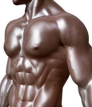 Muskeln sind weitaus mehr als ästhetisch: Ohne sie wäre ein Leben nicht denkbar.