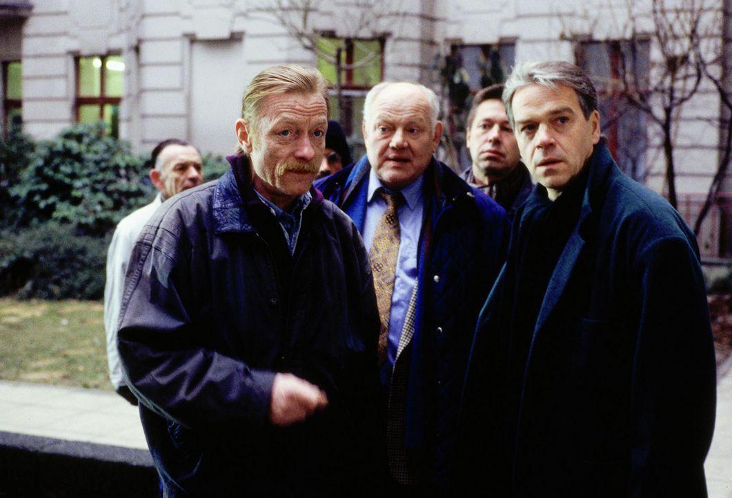 Gemeinsam mit dem Ex-Polizisten Hannes (Otto Sander, l.) ermitteln Wolff (Jürgen Heinrich, r.), Sawatzki (Klaus Pönitz, 3.v.r.) und Buchwald (Eckh... - Bildquelle: Alfred Raschke Sat.1