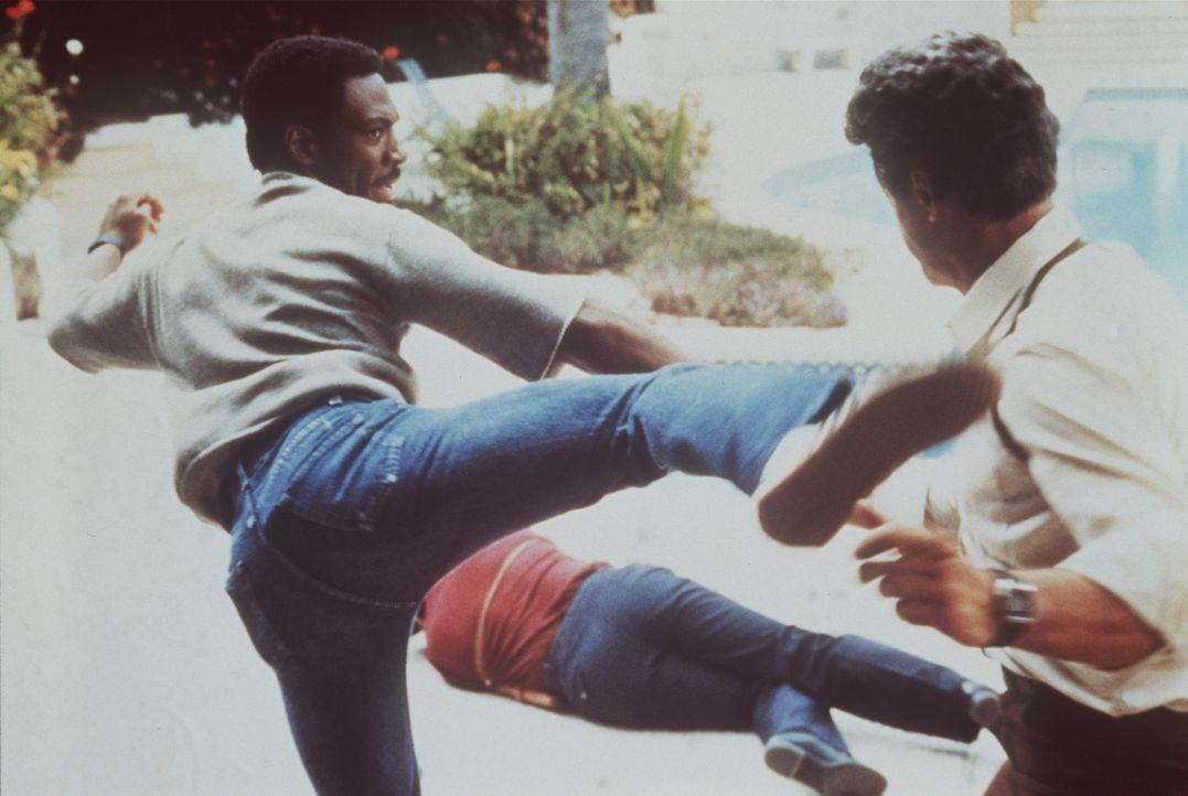 Nicht nur mit dem Mundwerk ist er schlagfertig - so ein paar böse Jungs aus Beverly Hills hält sich Axel (Eddie Murphy) locker vom Hals ... - Bildquelle: Paramount Pictures