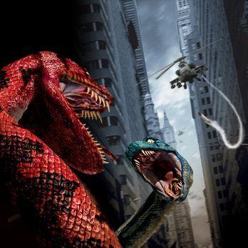 Boa vs. Python - Duell der Killerschlangen - Boa vs. Python - Duell der Kille...